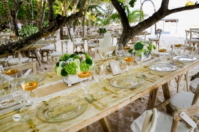 SOS Wedding Panners 043
