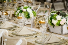SOS Wedding Panners 067