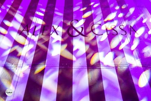 Cissa&Alex-291